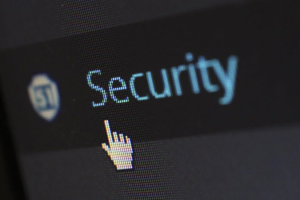 Web Services Security Testing